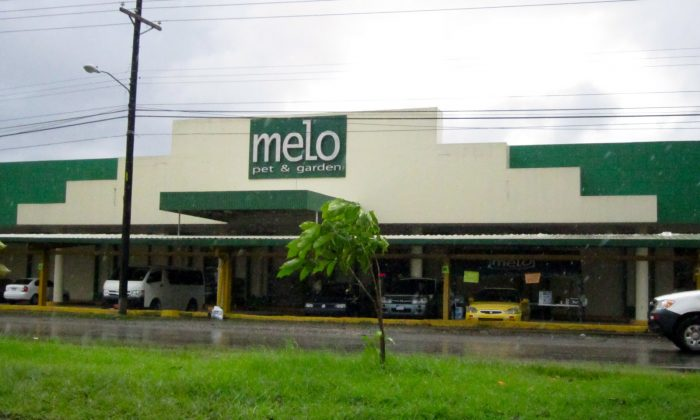 melo pet and garden panama sucursales