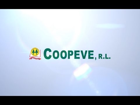 Cooperativa de Ahorro y Crédito (Coopeve)