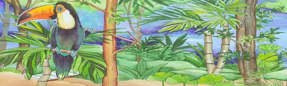 Le Toucan Bleu en Panamá