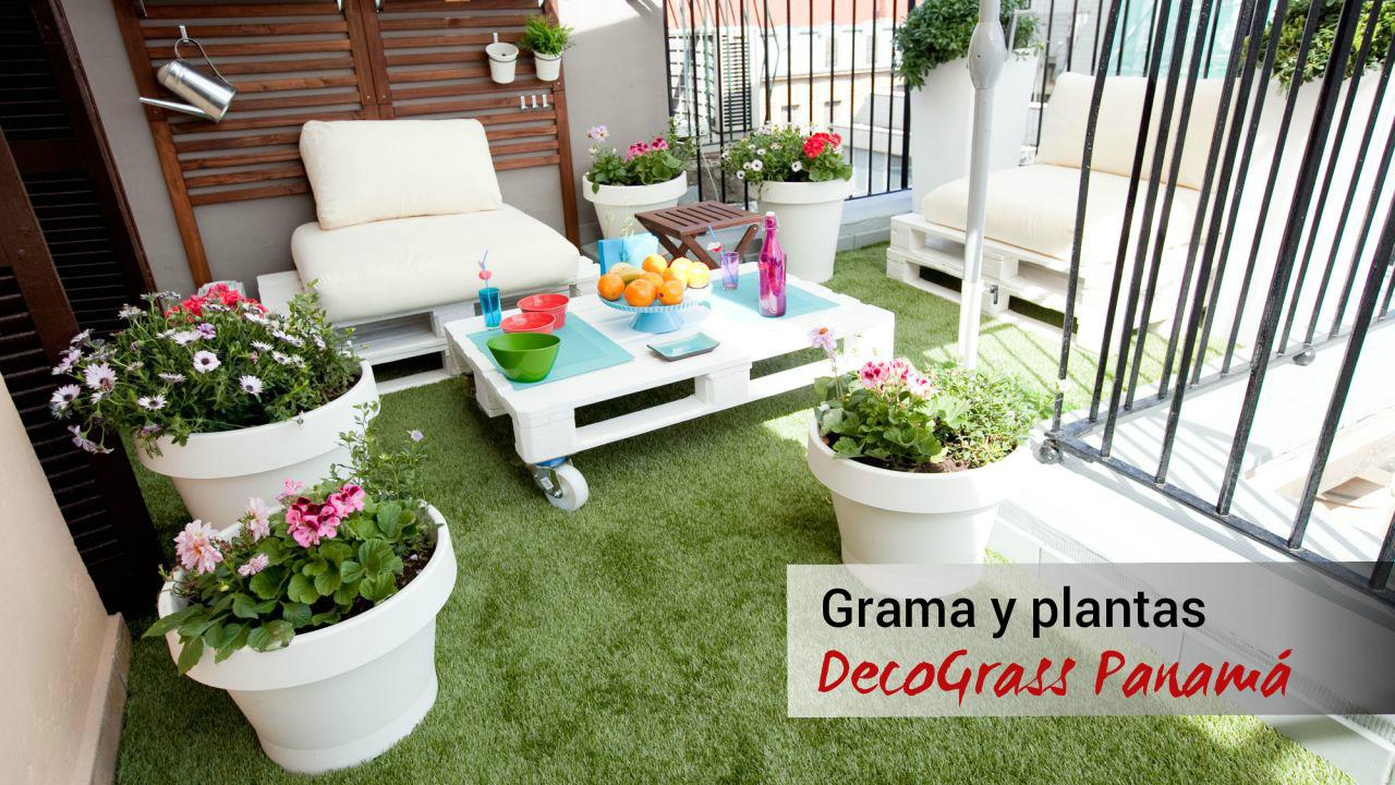 Gramas y plantas, DecoGrass Panamá