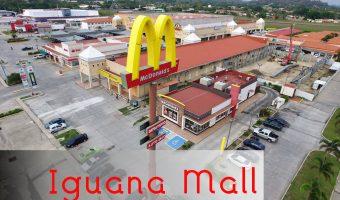 Iguana Mall